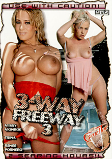 3-Way Freeway 3